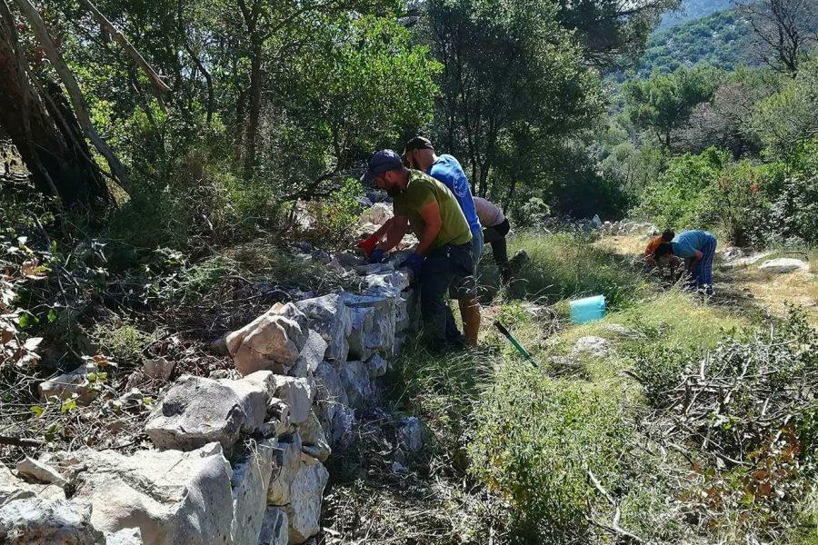 Volonteri obnovili 50 metara suhozida na Glagoljaškoj stazi u Tkonu