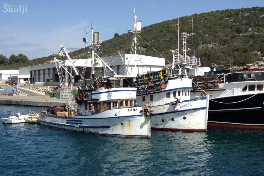 Izabrani izvođači radova za Ribarsku luku Vela Lamjana