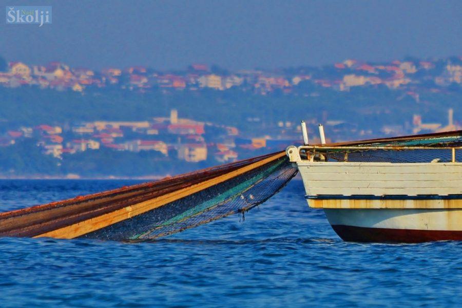Ministarstvo poljoprivrede otvorilo Portal gospodarskog ribarstva