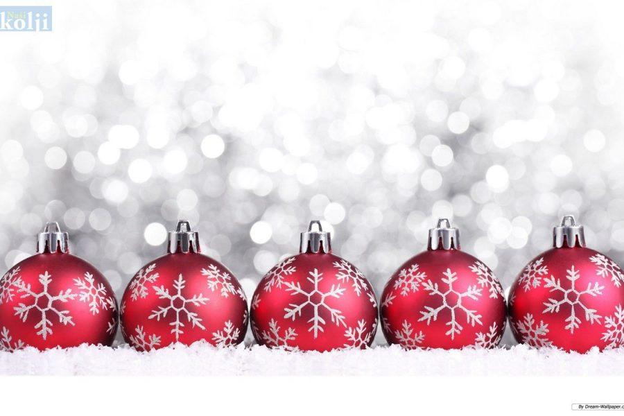 Božićni koncert u POU Dom na žalu
