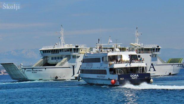 Brodska linija Preko – Zadar i lani najprometnija, trajektna na trećemu mjestu