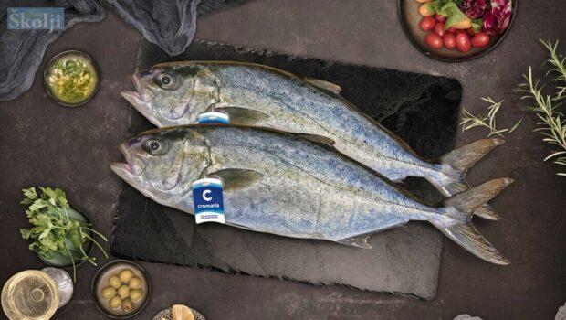 U ribarnice stiže Cromarisov uzgojeni gof, a uskoro i zubatac