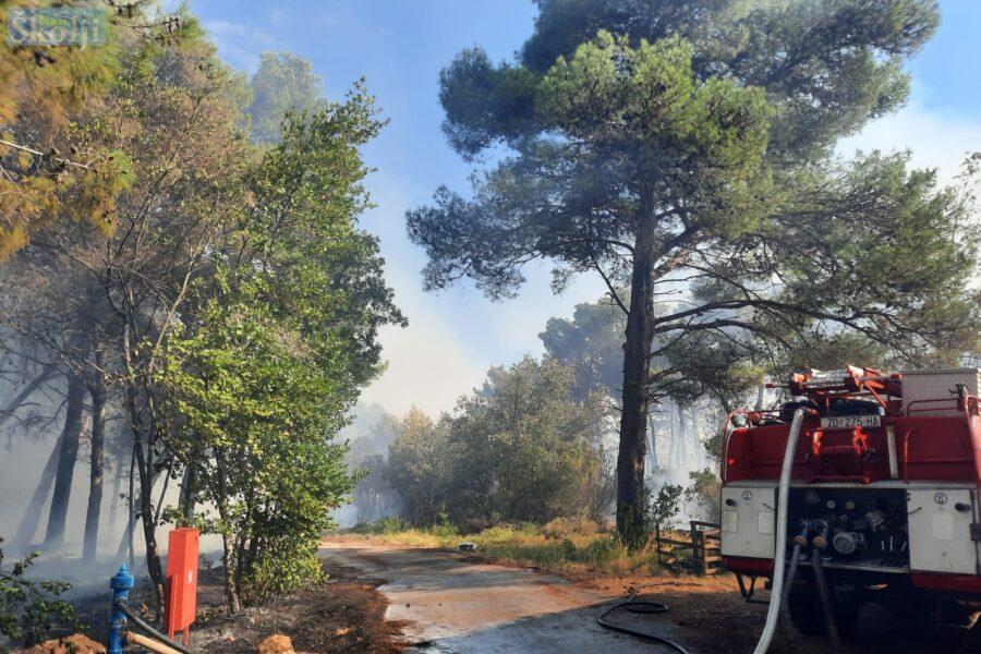 Policija potvrdila – požar pokraj PB Ugljan je podmetnut!